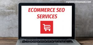 Ecommerce SEO consultant services