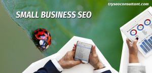 SMALL BUSINESS SEO CONSULTANT SERVICES