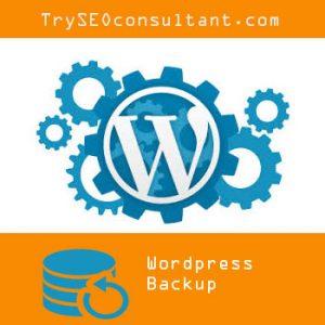 Wordpress Backup Services